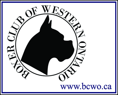 BCWOBusinessCard
