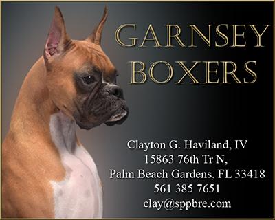 GarnseyBoxersBusinessCard